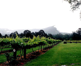 Cambewarra Estate Wines - Tourism Brisbane