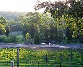 Lyrebird Ridge Organic Winery