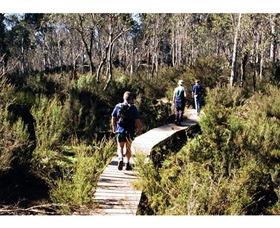 Hume and Hovell Walking Track - Henry Angel Trackhead - Tourism Brisbane