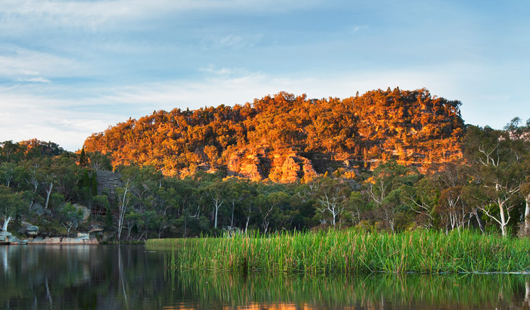 Wollemi National Park - Tourism Brisbane