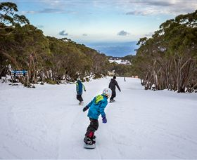 Mt Baw Baw Alpine Resort - Tourism Brisbane