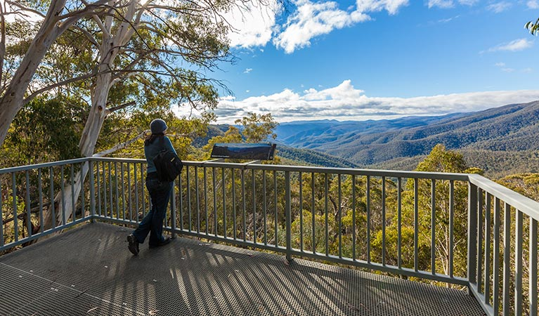 Wallace Creek lookout - Tourism Brisbane