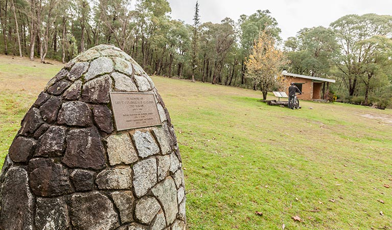 Major Clews Hut walking track