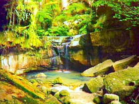 Carnarvon Gorge Carnarvon National Park - Tourism Brisbane