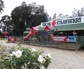 The Big Strawberry - Tourism Brisbane