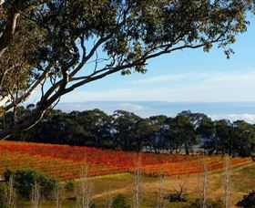 Bloodwood Estate - Tourism Brisbane