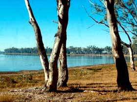 Lake Broadwater Conservation Park