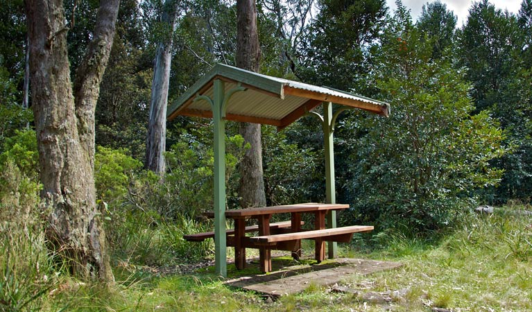 Devils Hole lookout walk and picnic area - Tourism Brisbane