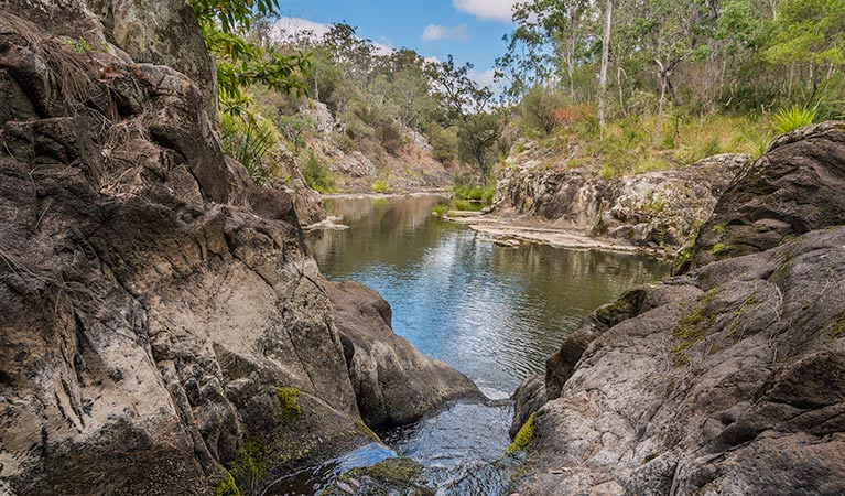 Gorge walking track - Tourism Brisbane
