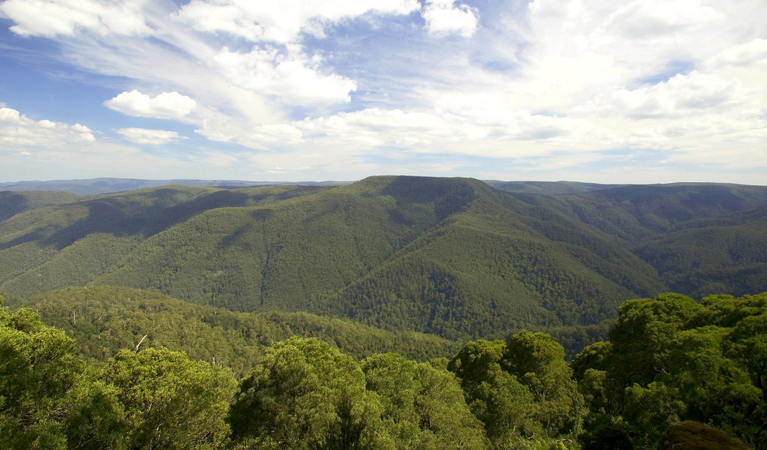 Barrington Tops National Park - Tourism Brisbane