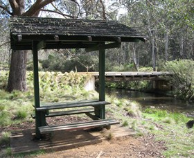 Barrington Tops State Forest - Tourism Brisbane