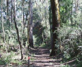 Box Vale Mine Walking Track and Lookout - Tourism Brisbane