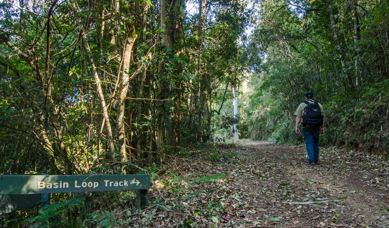 Basin Loop track - Tourism Brisbane