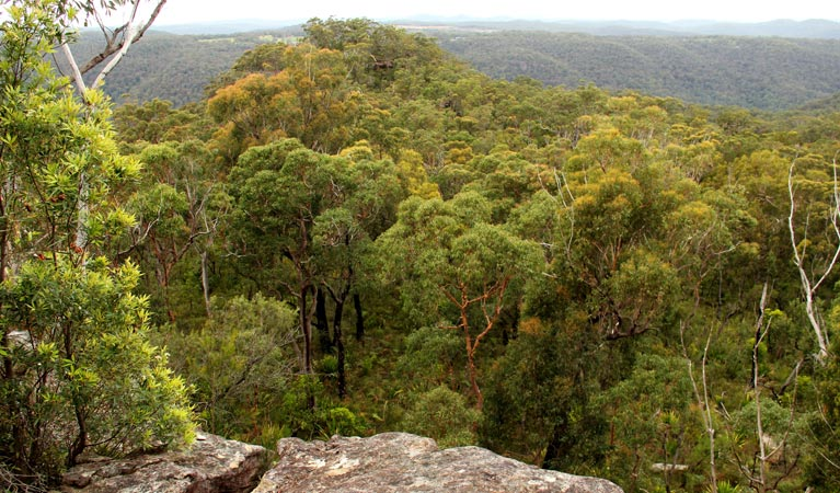 Mount Olive lookout - Tourism Brisbane