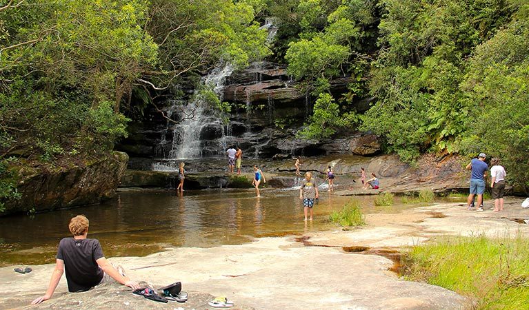 Somersby Falls picnic area - Tourism Brisbane