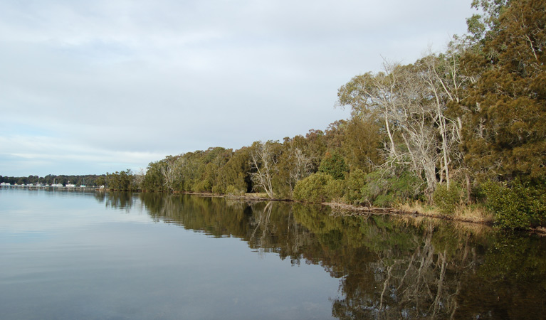 Lake Macquarie State Conservation Area - Tourism Brisbane