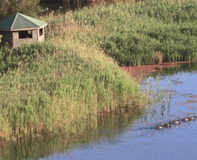 Spring Creek Bird Hide - Tourism Brisbane