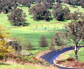 Blackwood River Tourist Drive - Tourism Brisbane