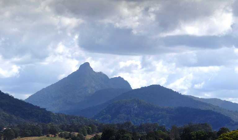 Wollumbin National Park - Tourism Brisbane