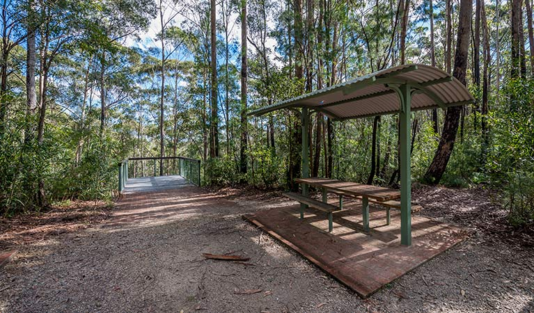 Big Nellie lookout and picnic area - Tourism Brisbane