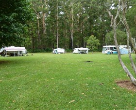 Coopernook Forest Park - Tourism Brisbane