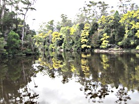 Arthur River - Tourism Brisbane