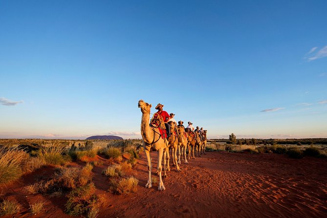 Uluru Camel Express Sunrise or Sunset Tours - Tourism Brisbane