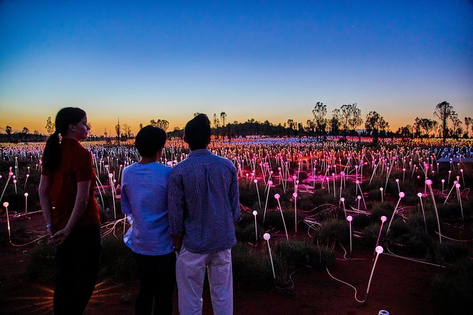 Uluru Field of Light Sunrise Tour