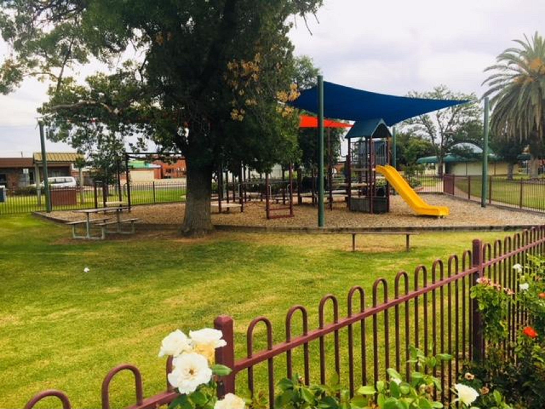 Cobram Mivo Park and Playground - Tourism Brisbane