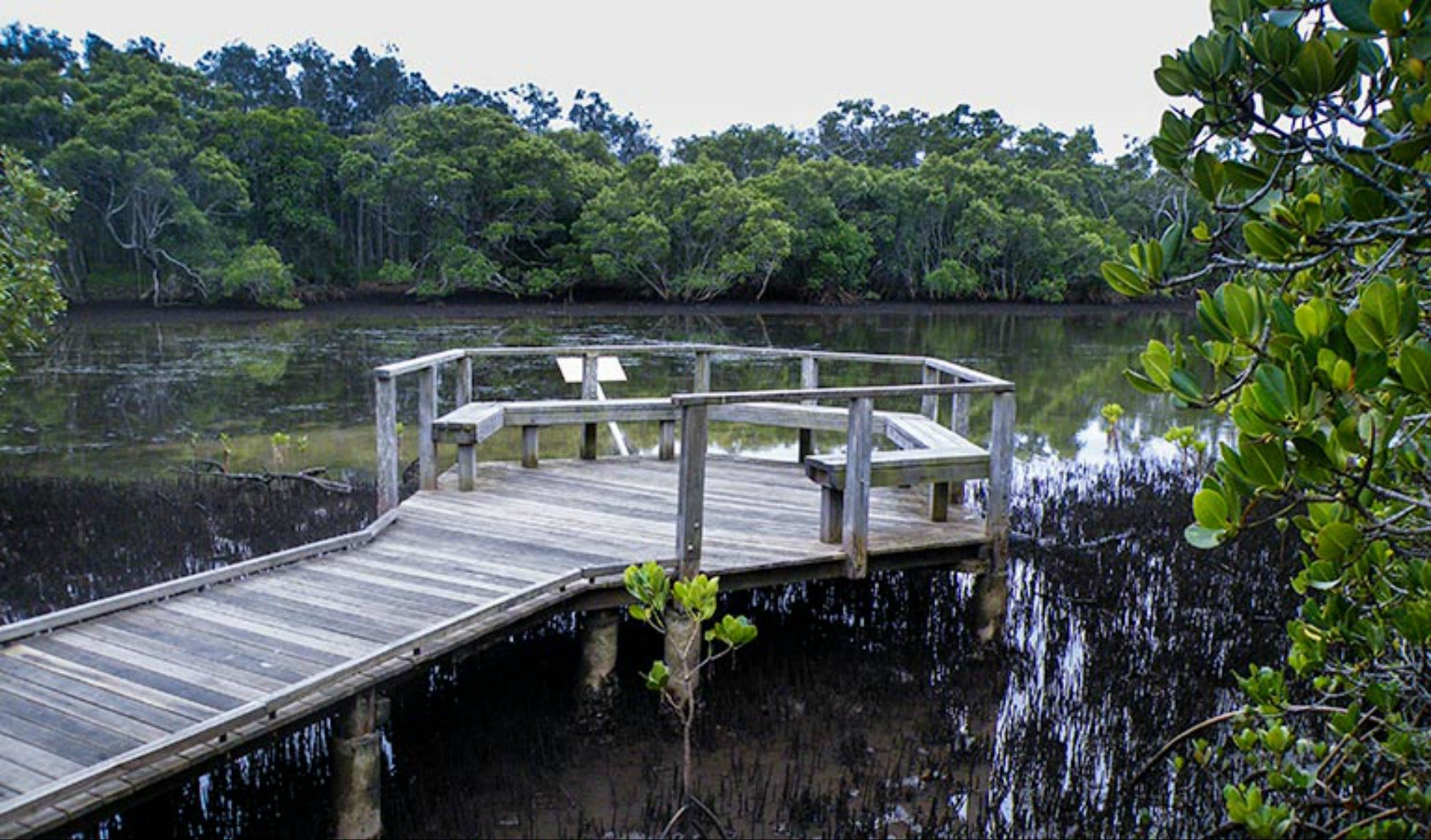 Walk on Water walking track - Tourism Brisbane