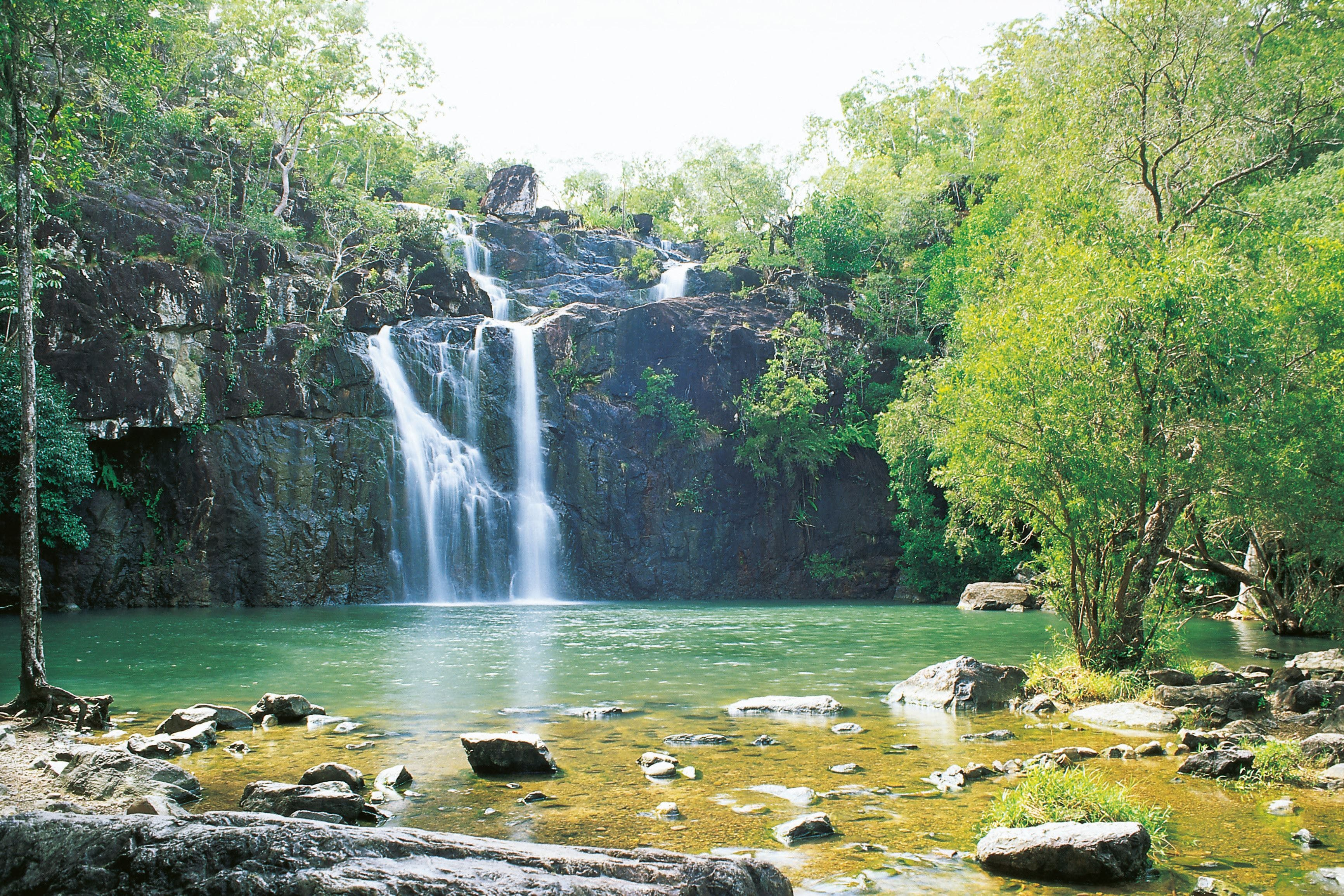 Airlie Beach to Cedar Creek Falls - Tourism Brisbane