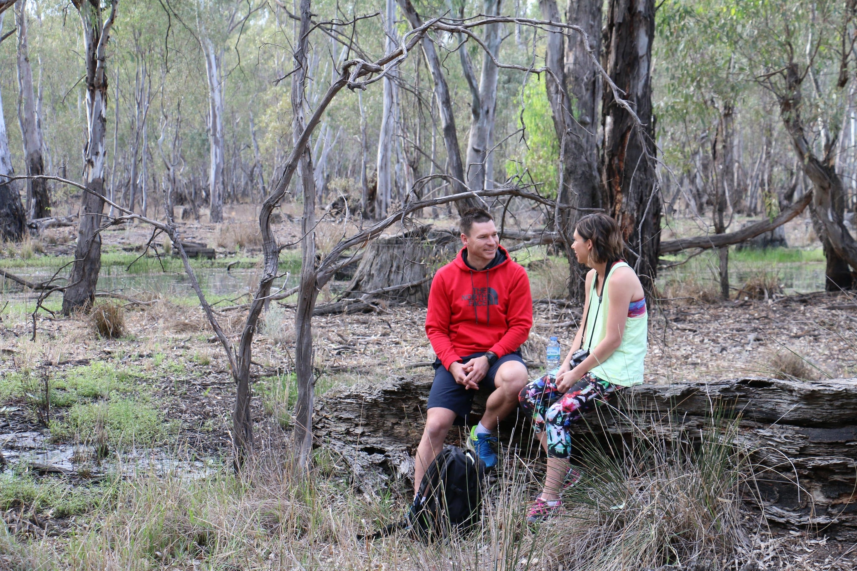Gunbower Island Forest Drive - Tourism Brisbane
