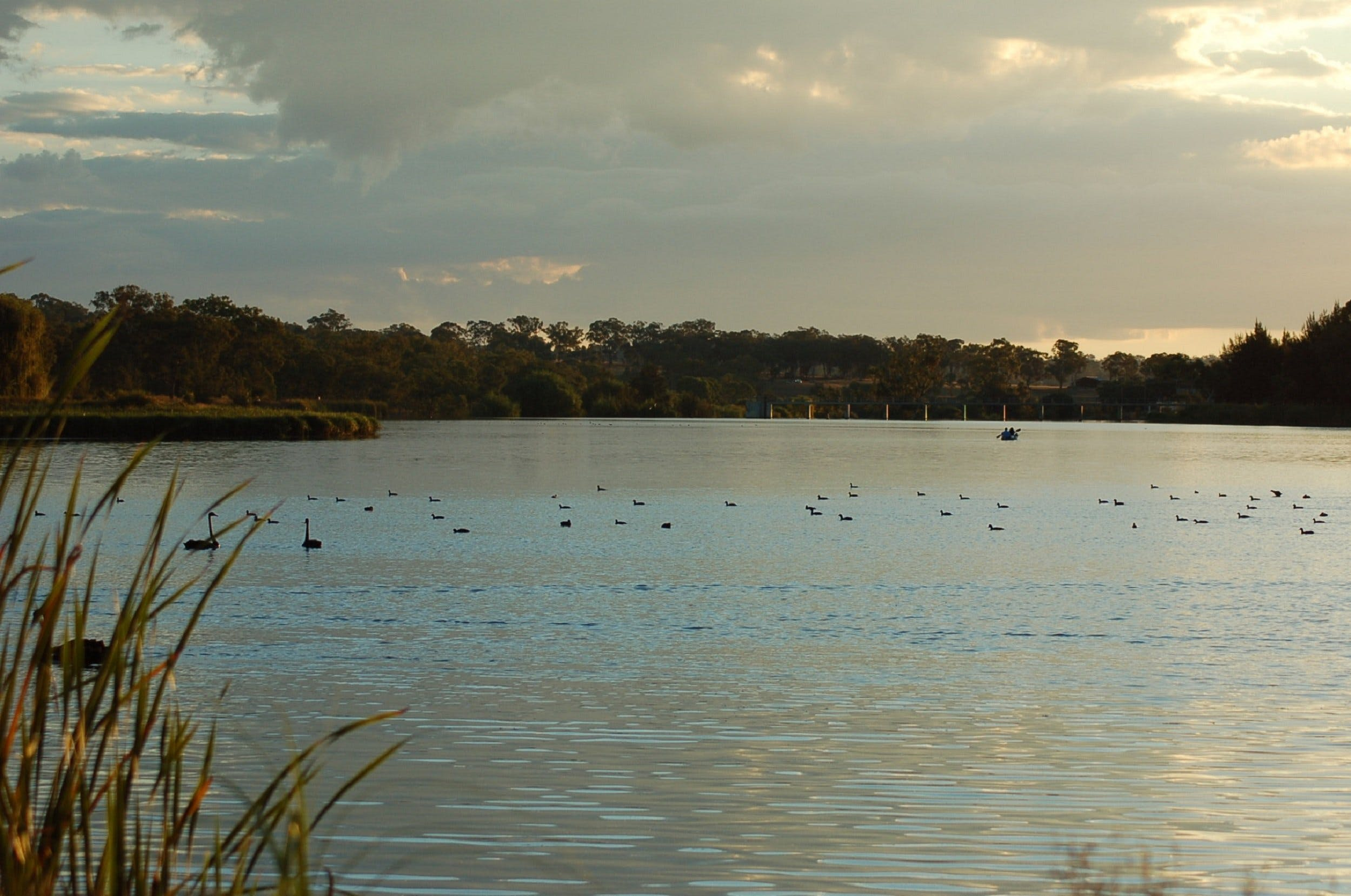 Lake Inverell Reserve - Tourism Brisbane