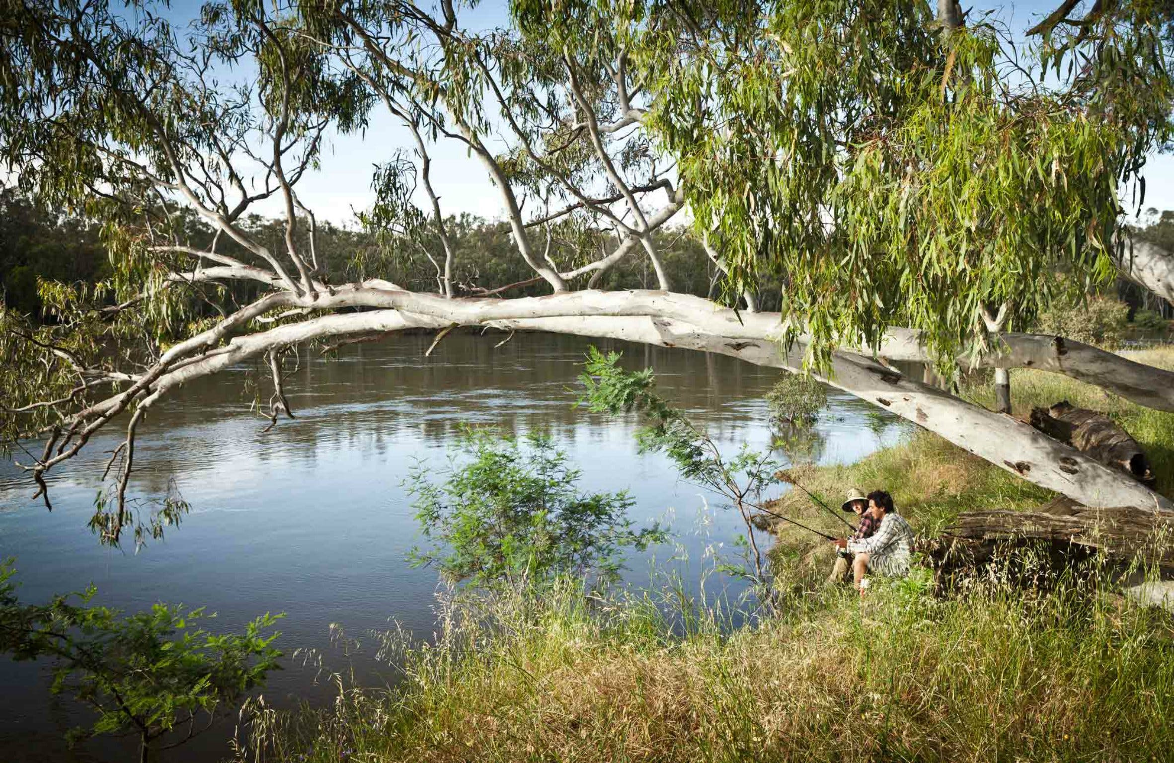 Murray Valley National Park - Tourism Brisbane
