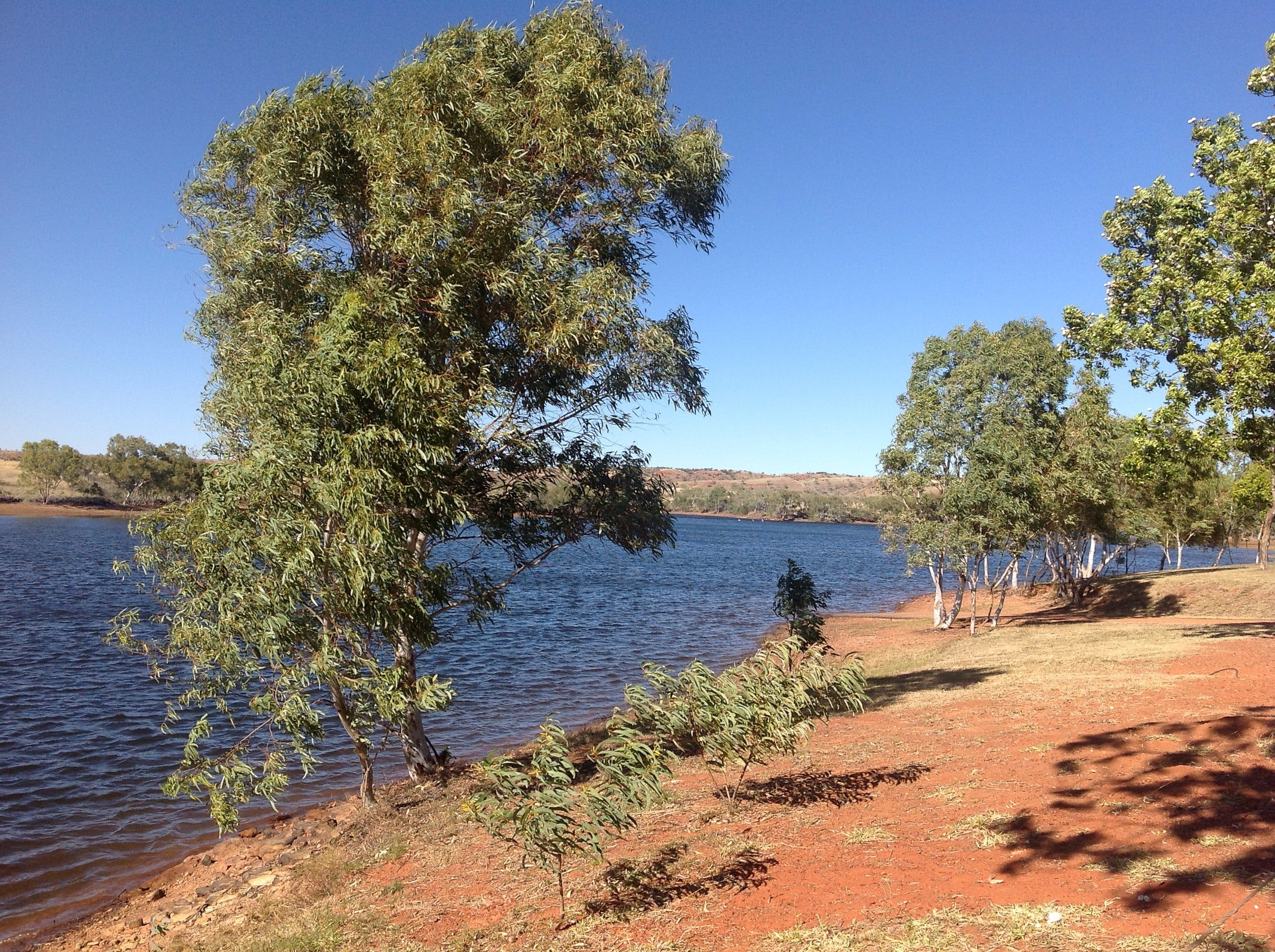 Tingkkarli/Lake Mary Ann - Tourism Brisbane