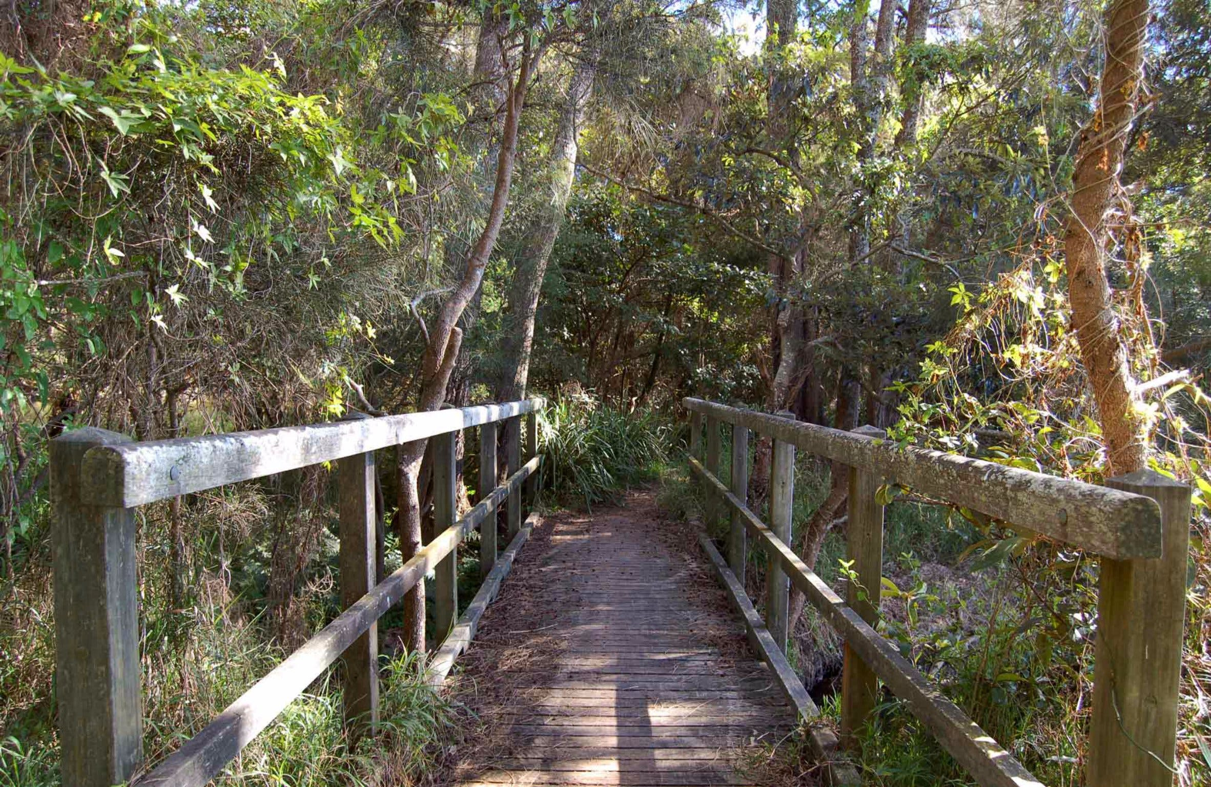 Awaba Bay Foreshore Walk - Tourism Brisbane