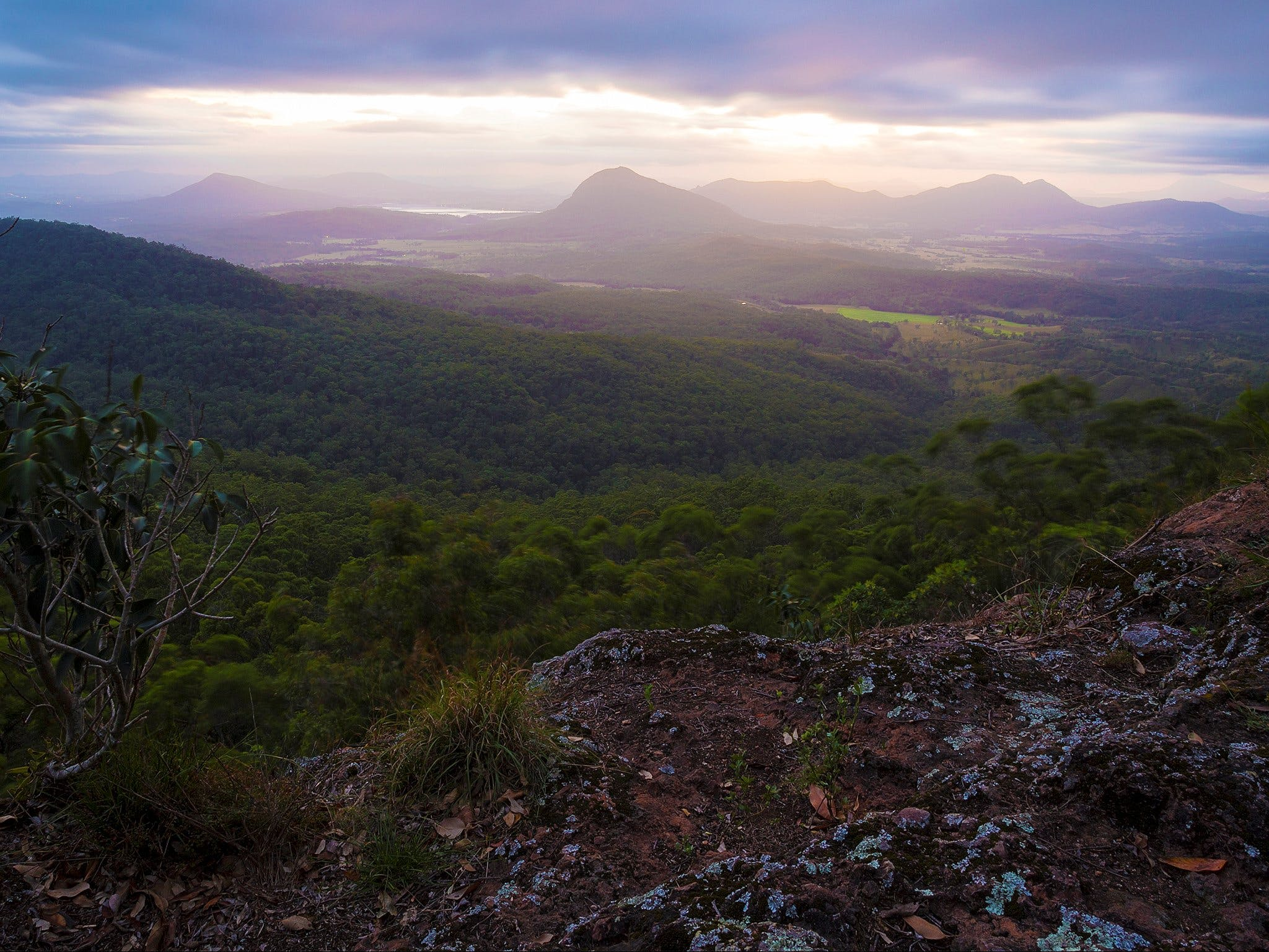 Cunninghams Gap and Spicers Gap Main Range National Park - Tourism Brisbane