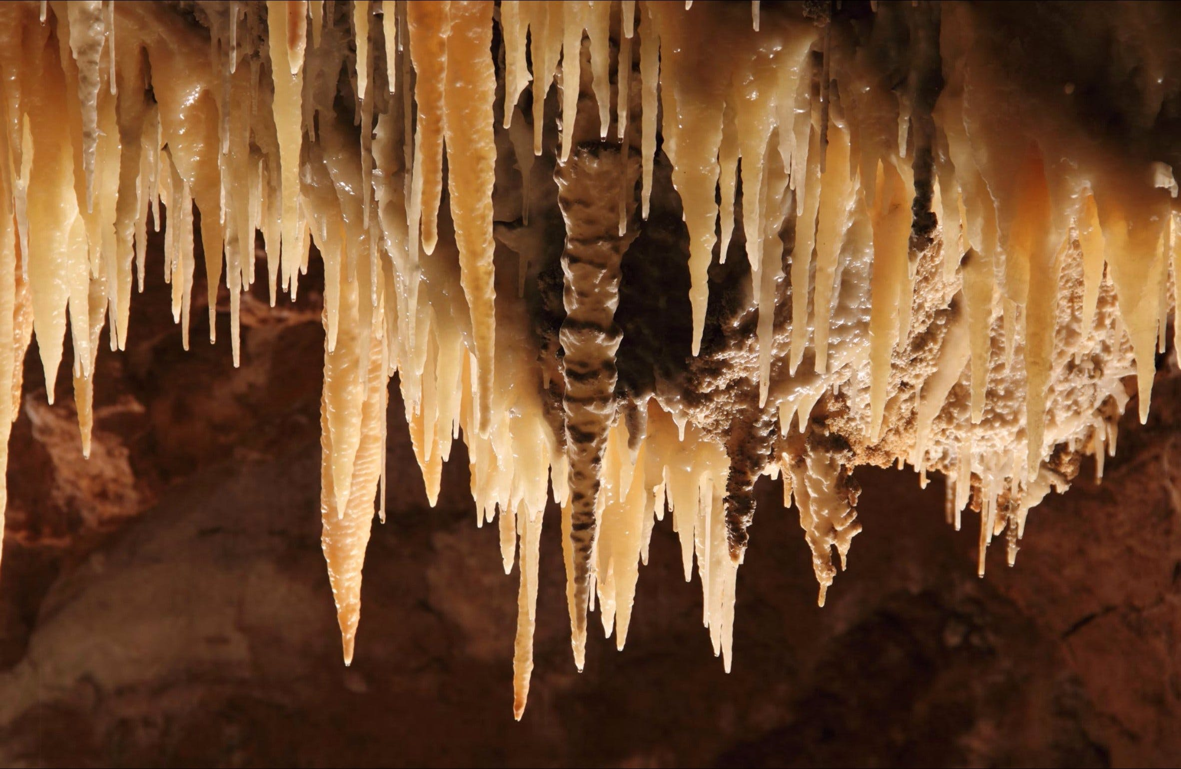Wollondilly Cave - Tourism Brisbane