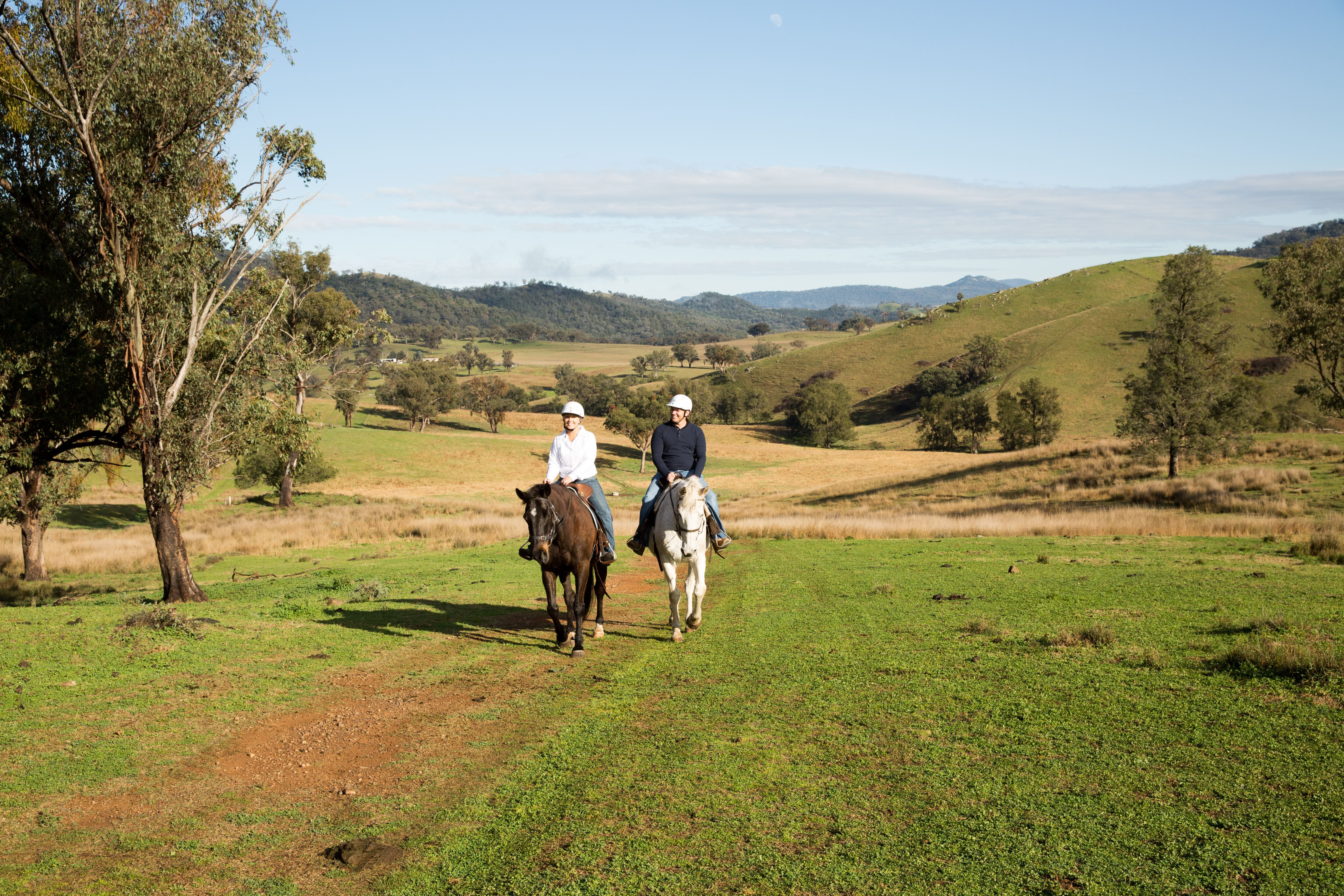 Tamworth and Kootingal Horse Riding Adventures - Tourism Brisbane