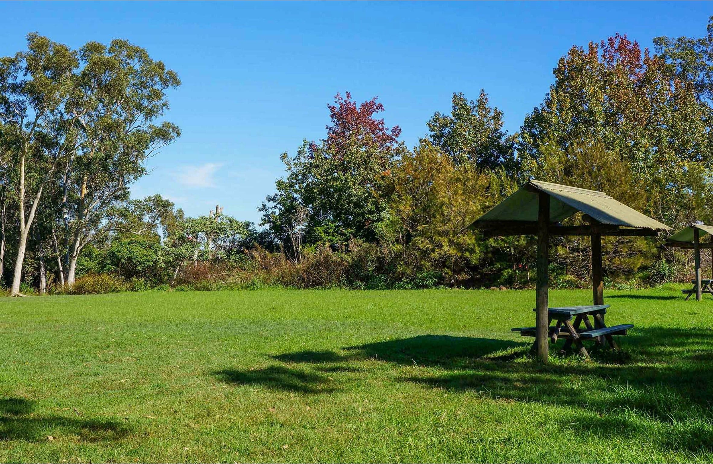 Tunks Hill picnic area - Tourism Brisbane