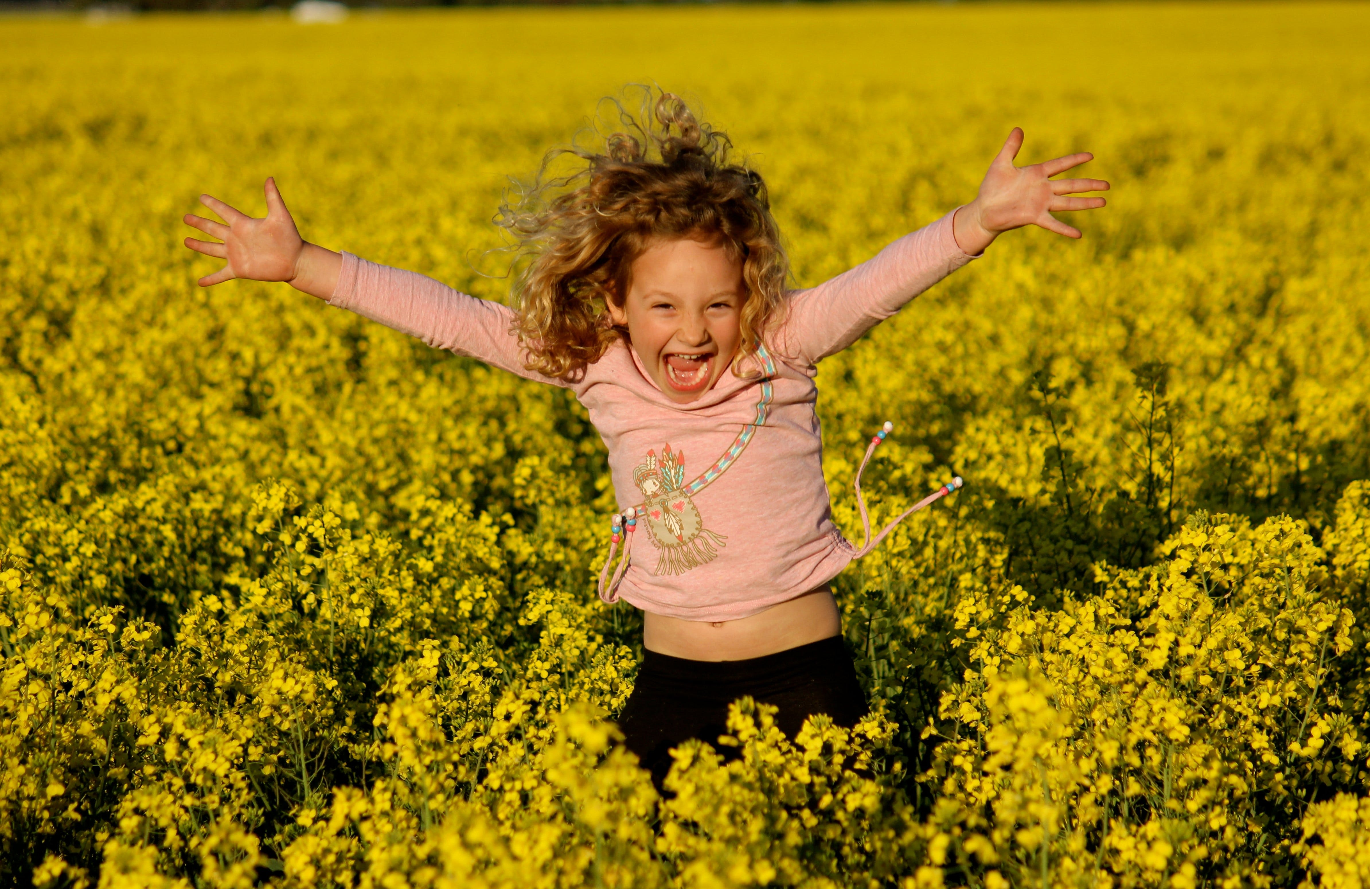 Canola Trail - Tourism Brisbane