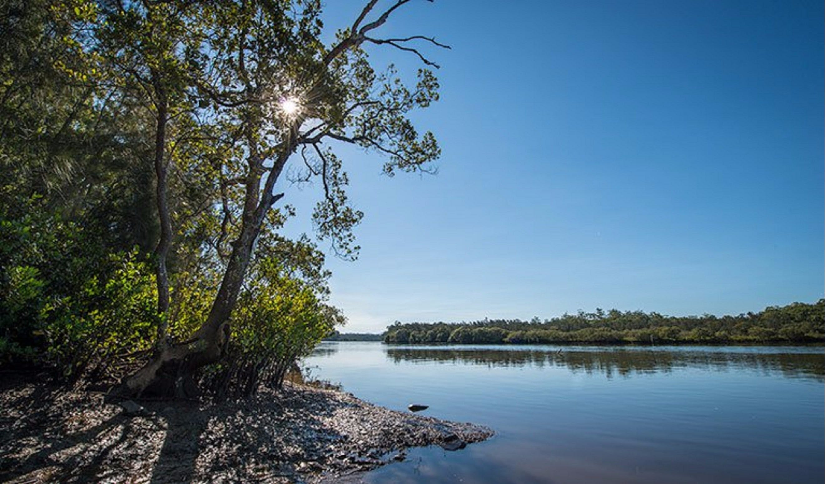 Karuah River National Park and Nature Reserve - Tourism Brisbane