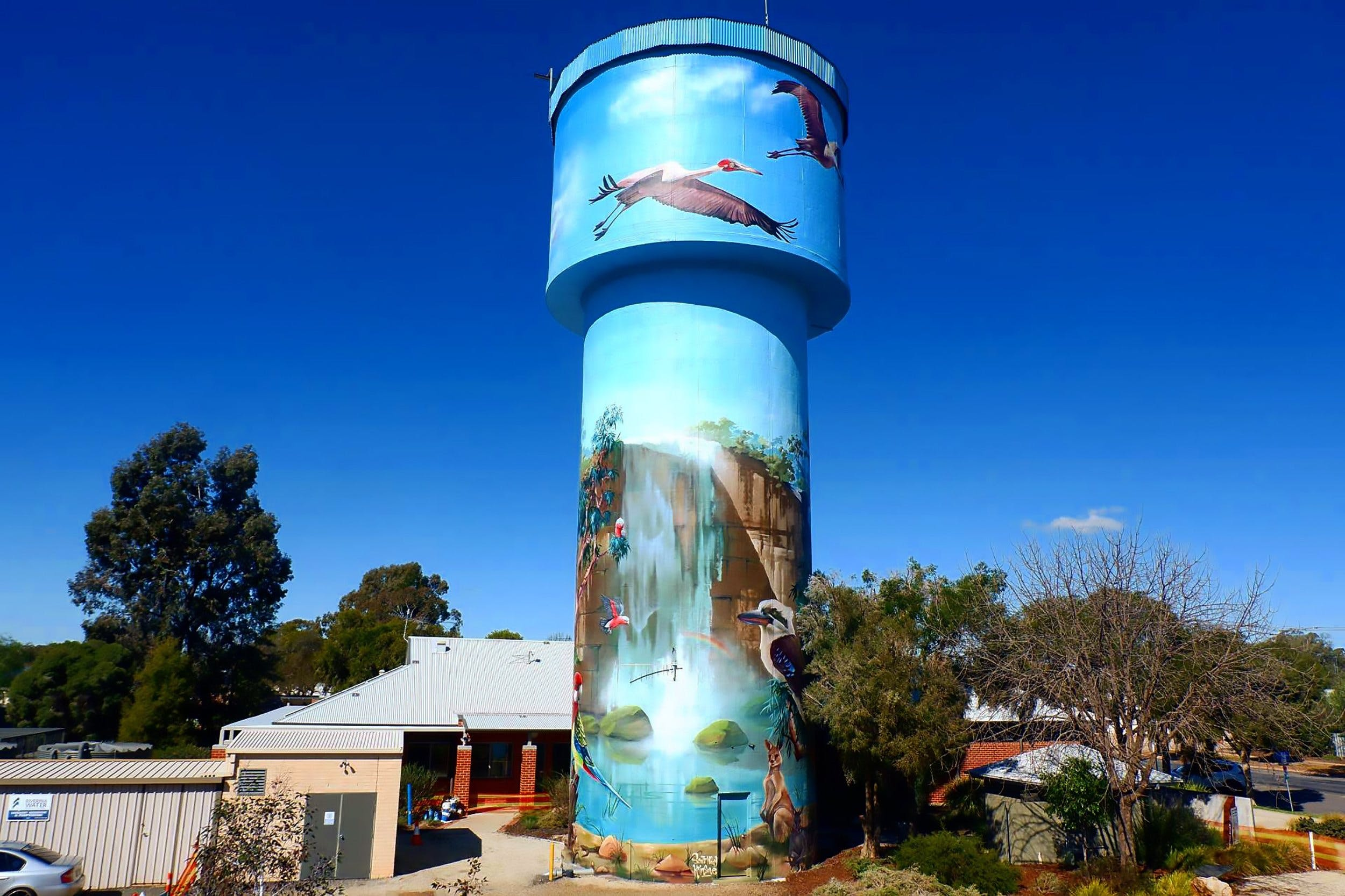 Lockhart Water Tower Mural - Tourism Brisbane