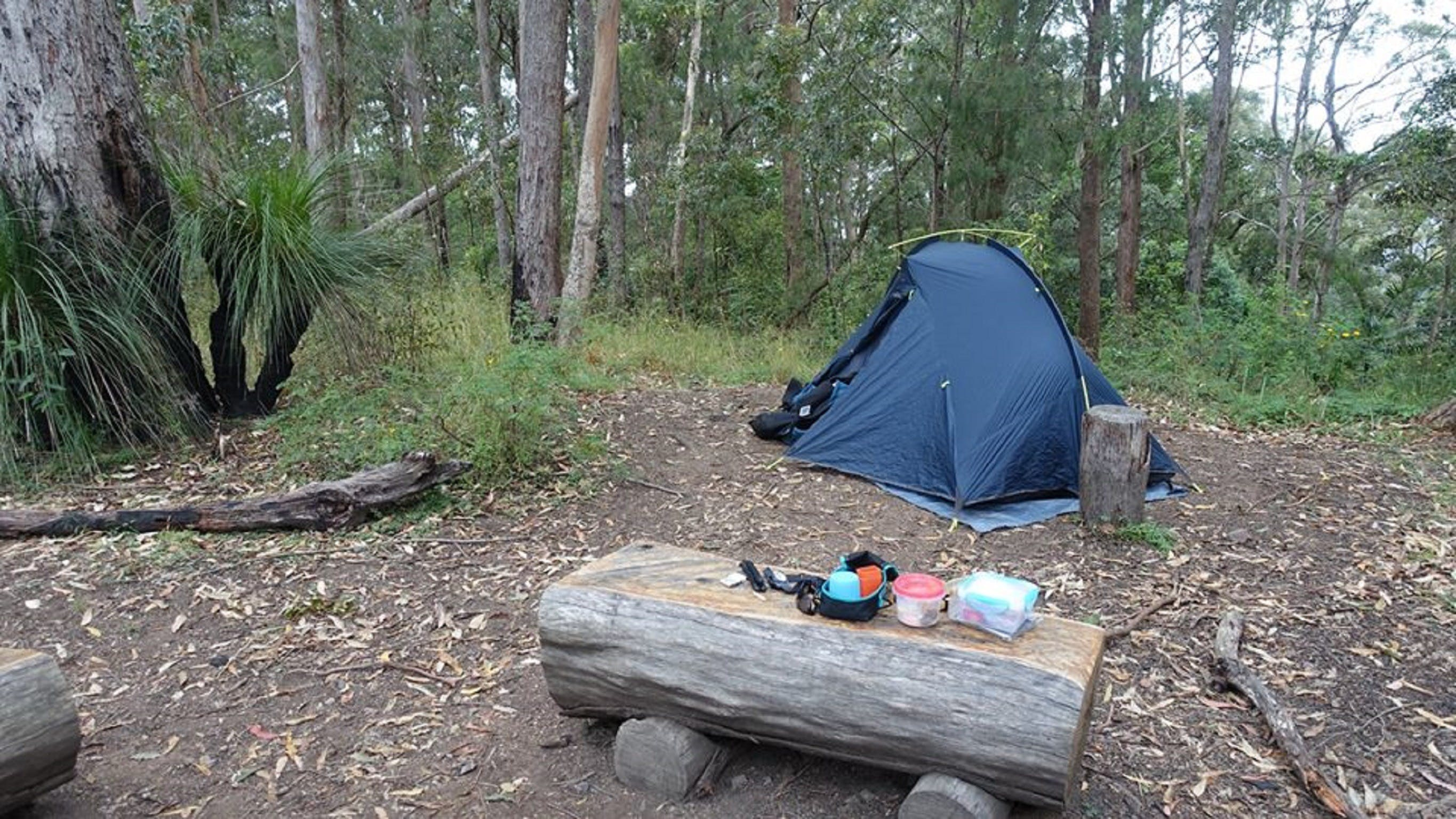 Northbrook Mountain Bush Camp - Tourism Brisbane