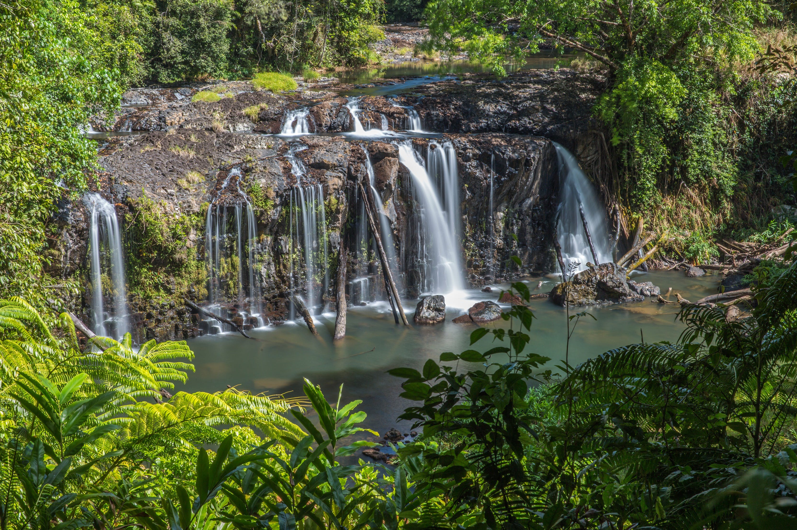 Wallicher Falls - Tourism Brisbane