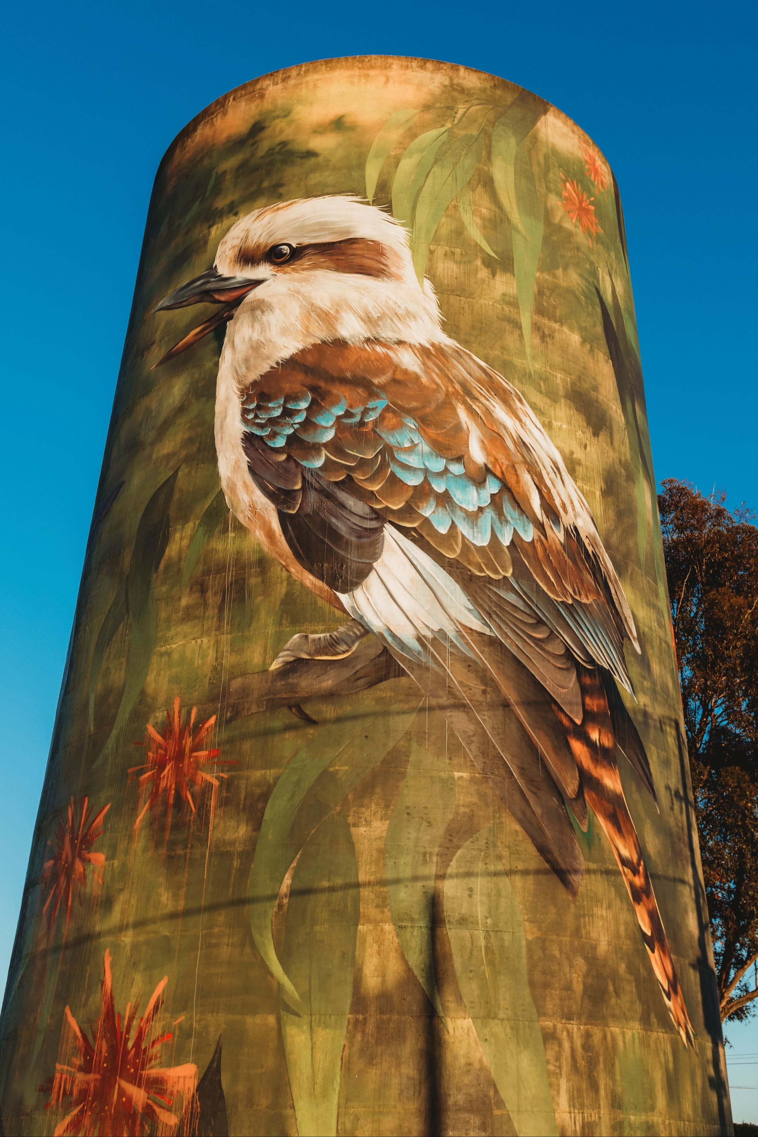 Deniliquin Water Tower Mural - Tourism Brisbane