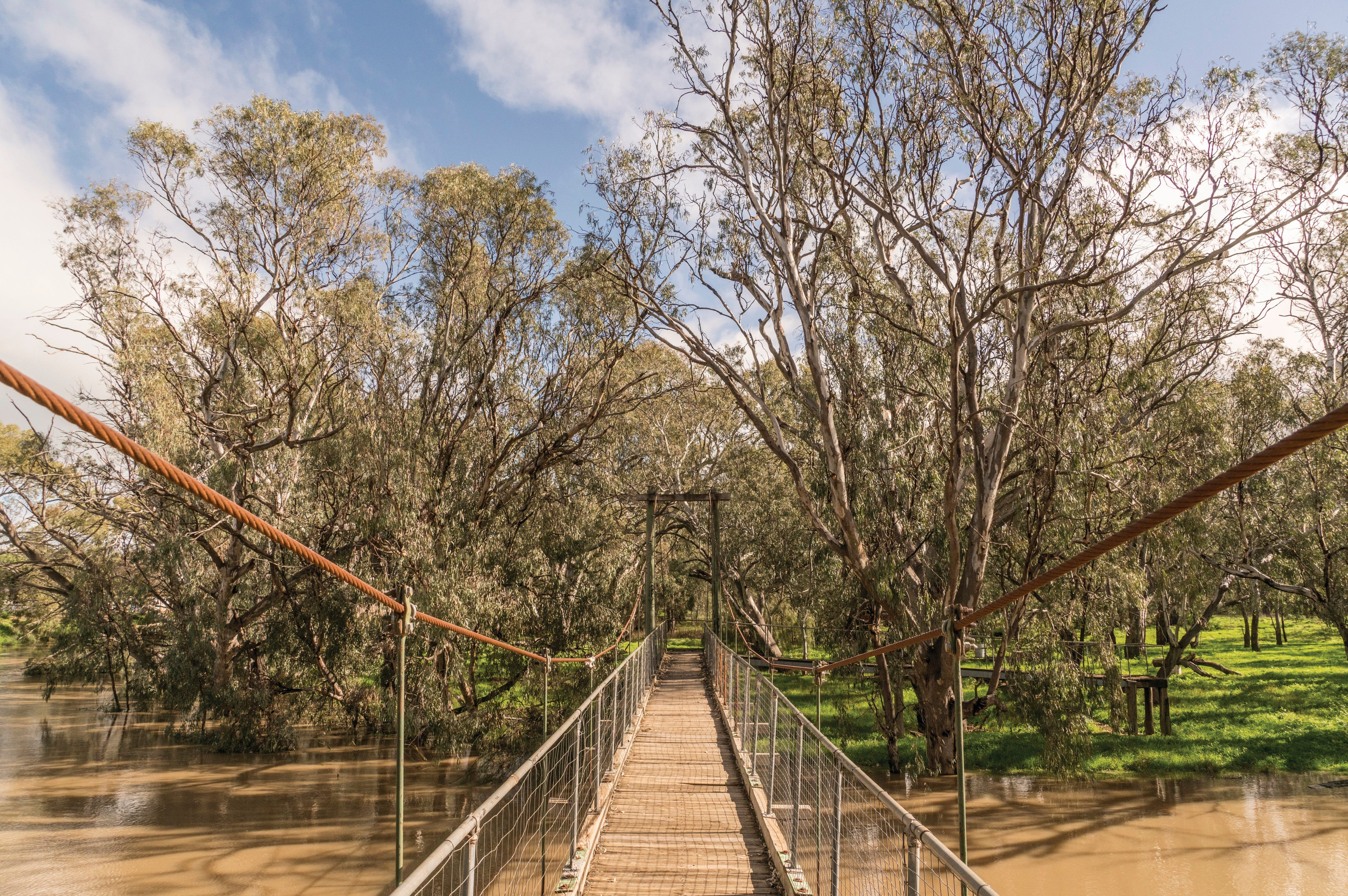 Lachlan River Swing Bridge - Tourism Brisbane