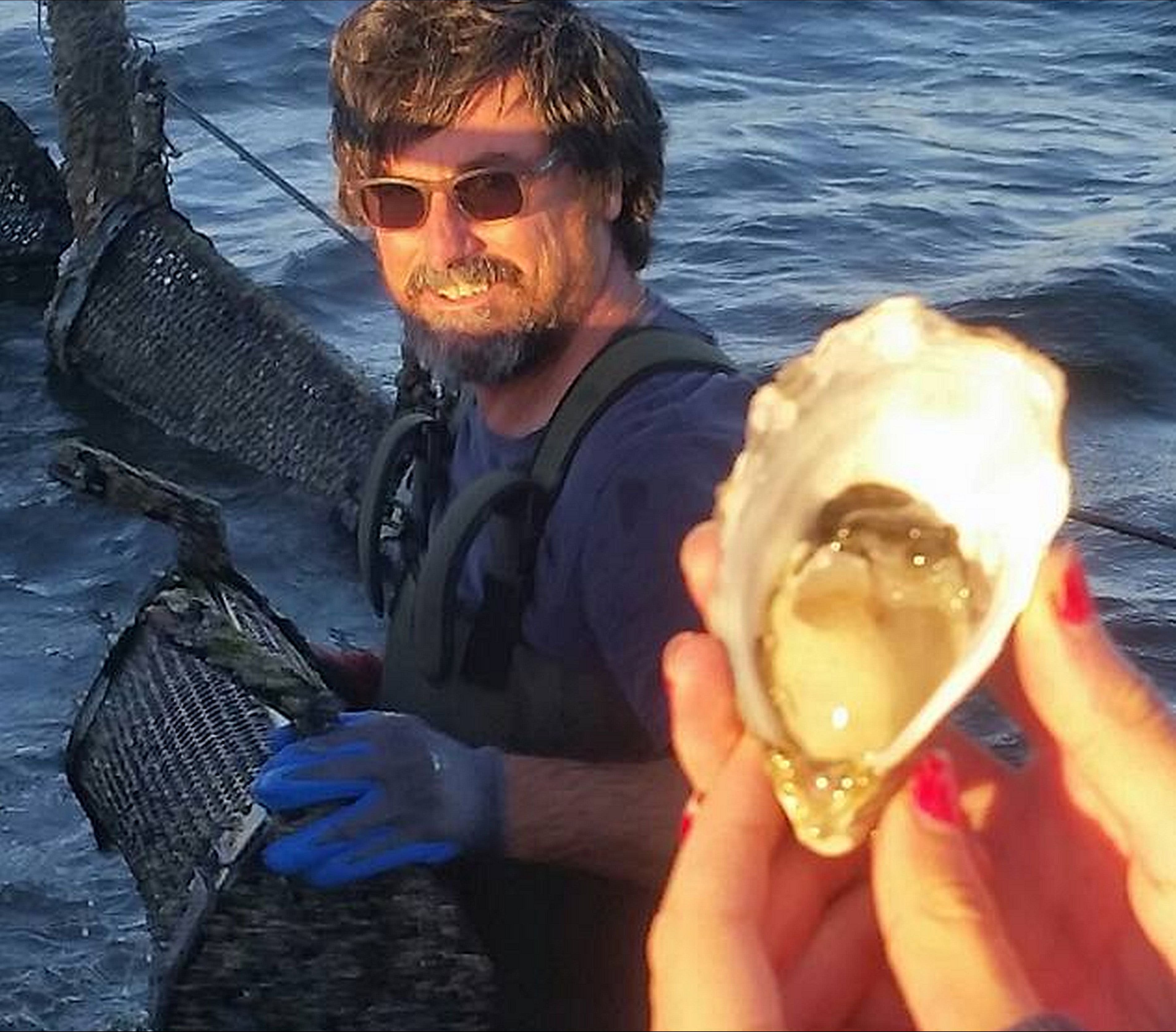 Southern Yorke Oysters - Tourism Brisbane