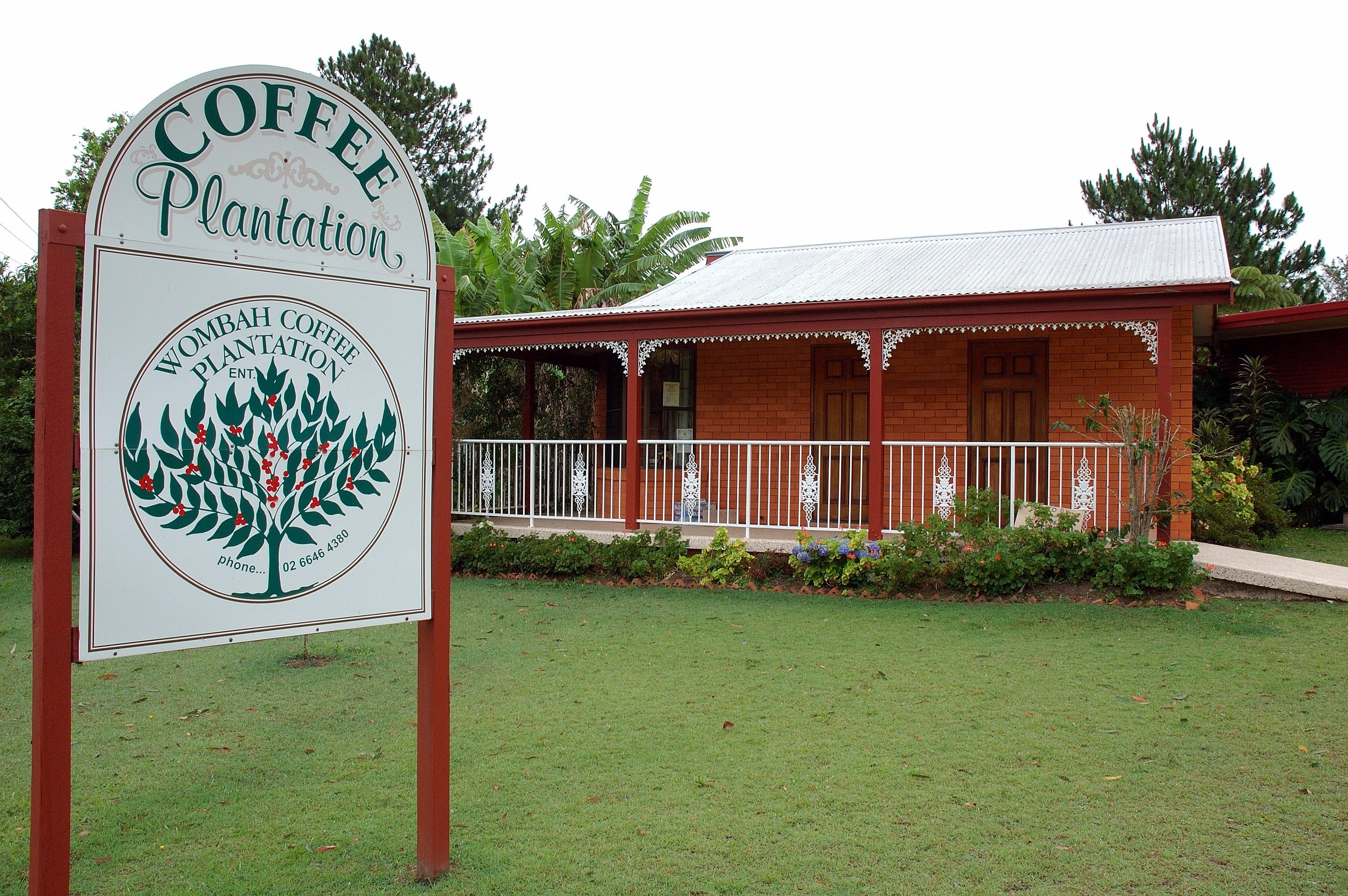 Wombah Coffee Plantation - Tourism Brisbane