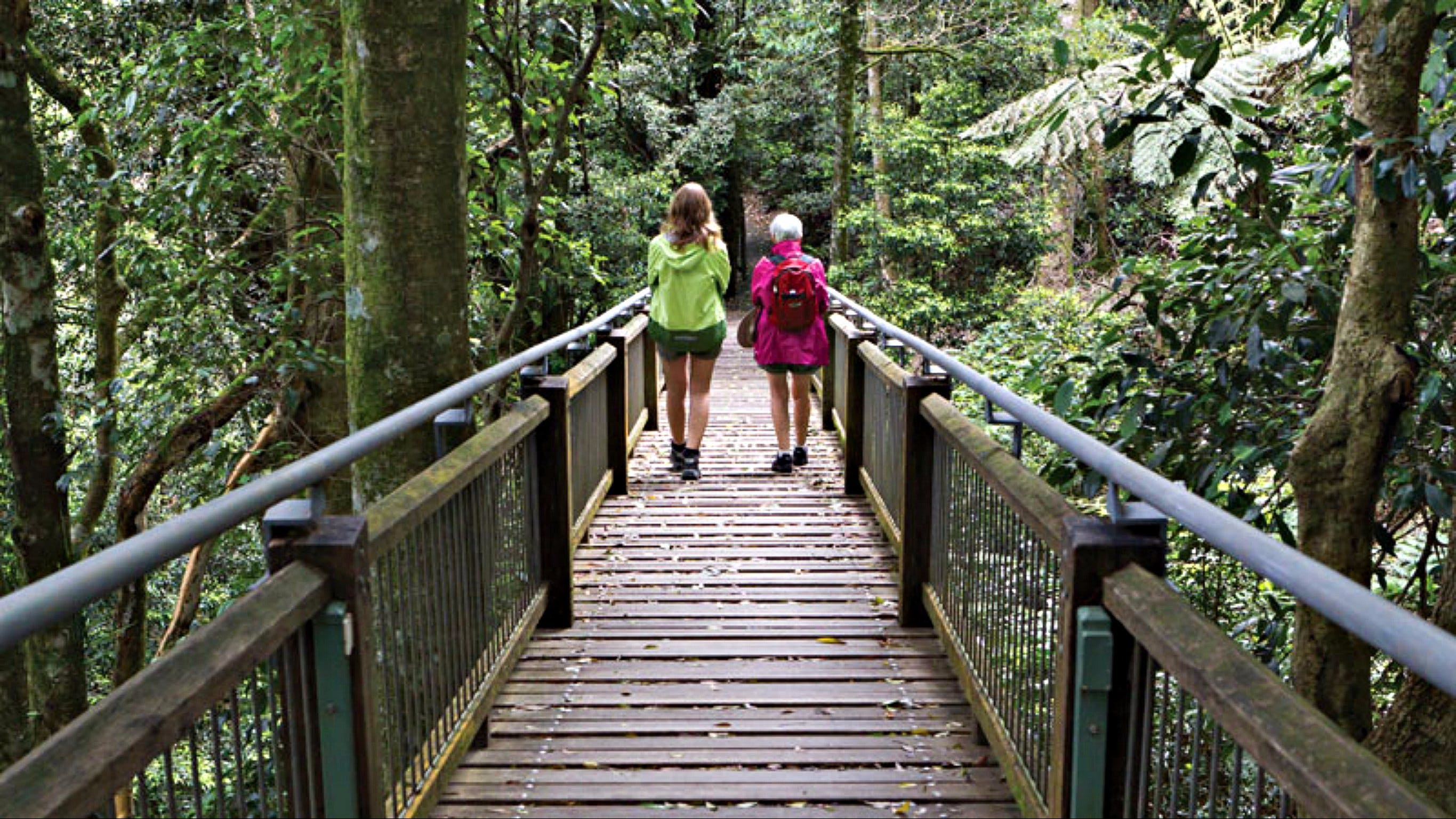 Wonga Walk - Tourism Brisbane